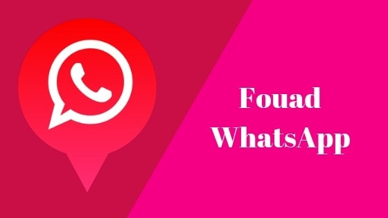 Fouad WhatsApp For PC- Install Latest Version Fouad WhatsApp Apk